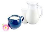 Milch, Joghurt & Dessert